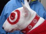 bullseye the target dog