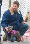 tom hardy animal rescue movie