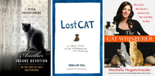 year of the cat books nytimes lost cat book