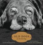 old_dog