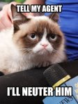 Grumpy_Cat_Tell_My_Agent_a_p