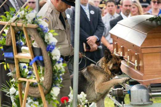 jason ellis funeral fido german shepherd k9