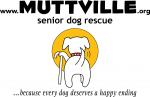 MUTTVILLE-Logo-600x391
