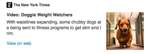 doggie weight watchers nytimes