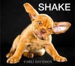 shake dog book by carli davidson