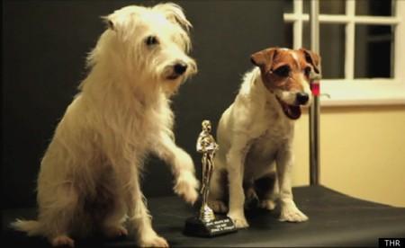 OSCAR-DOGS