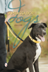 ambassador dogs lisa loeb