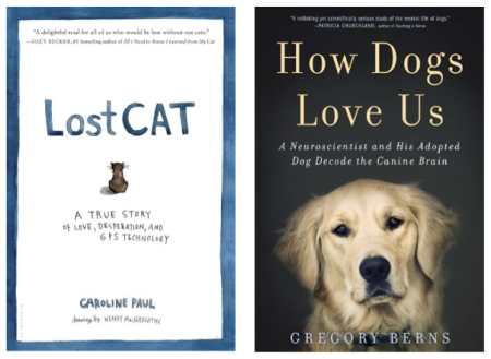 bargain booksy lost cat how dogs love us
