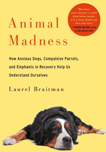 animal madness laurel braitman