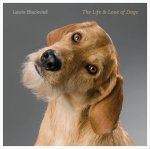 the life and love of dogs lewis blackwell