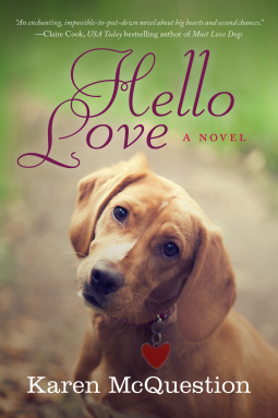 hello love karen mcquestion kindle