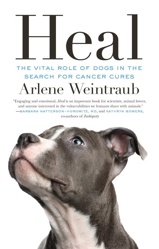 heal vital role of dogs in search for cancer cures dog book arlene weintraub