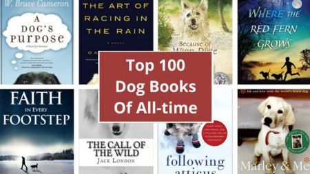 best-dog-books