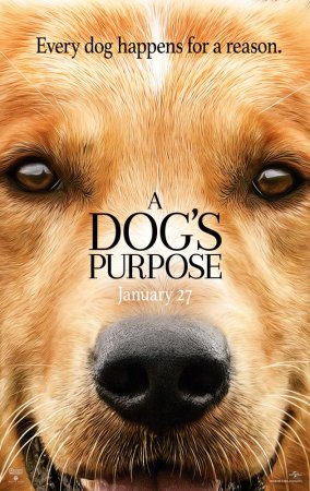 a_dogs_purpose-movie-film