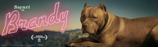 brandy dog once upon a time in hollywood